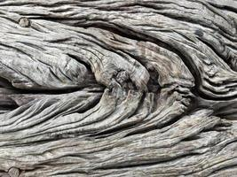 struttura di legno, fondo di legno foto
