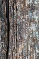decadimento del legno