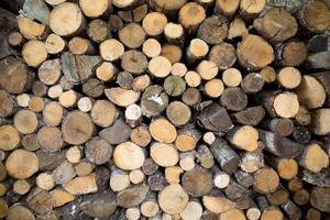 tronchi di legno sfondo o legna da ardere foto