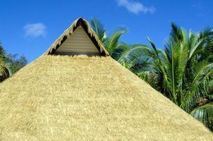 capanna isola del Pacifico foto