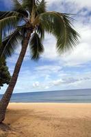 la spiaggia foto