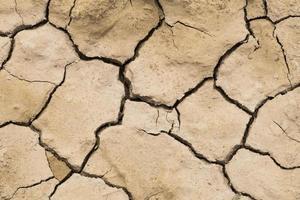 trama di terra secca incrinata foto