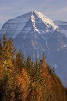 mount robson british columbia foto