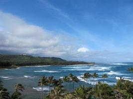 costa nord di oahu hawaii palme dell'oceano pacifico foto