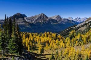 splendidi paesaggi montani in autunno foto