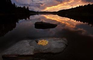 algonquin park muskoka ontario lago deserto foto