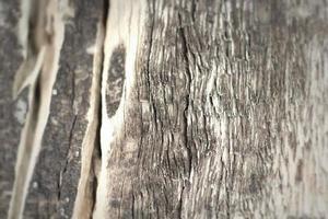 struttura di legno. vecchi pannelli di sfondo foto