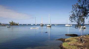 navi a vela nella baia di reed hilo hawaii foto
