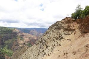 l'uomo si affaccia waimea canyon, isole hawaiane