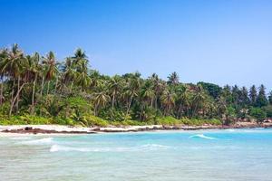 spiaggia tropicale di sabbia bianca con palme. koh kood, thailandia