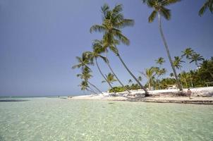 perfetta spiaggia tropicale dell'isola paradisiaca foto
