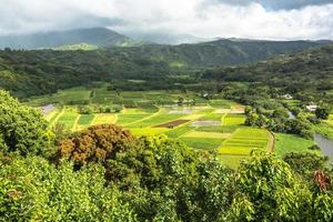 Valle di Hanalei a Kauai, Hawaii foto