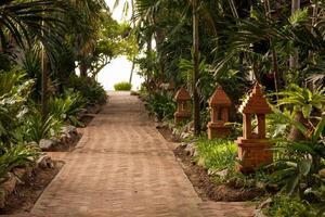 giardino tropicale e la strada per la spiaggia del mare foto