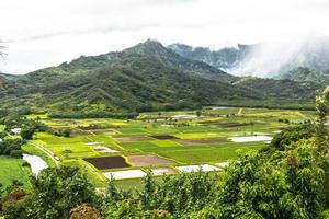 vedetta della valle di Hanaley, Kauai, Hawaii foto