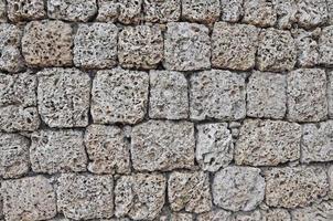 muro di corallo foto