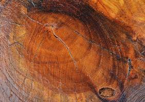 tavola di legno marrone texture di sfondo foto