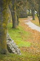 il sito patrimonio mondiale dell'unesco visby.gn foto
