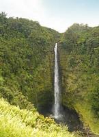 Akaka Falls foto