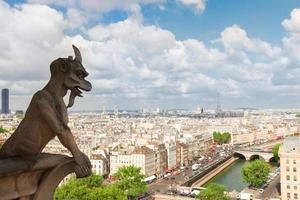 doccione di Parigi foto