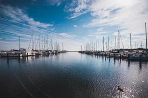 numerosi yacht nel porto di Copenaghen Danimarca foto