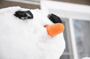 ritratto di pupazzo di neve foto