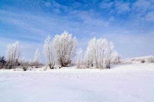 lago ghiacciato con neve foto
