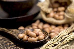 no arachidi secche conchiglia in cucchiaio di legno e sacco foto