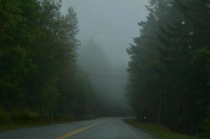 nebbia sulla strada foto