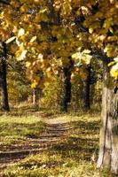 percorso a piedi