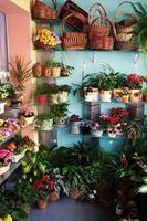 negozio di fiori foto