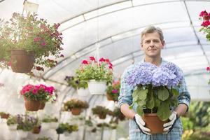 ritratto del giardiniere fiducioso tenendo il vaso di fiori in serra