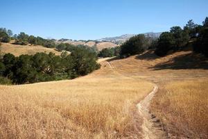 sentiero sulla collina foto