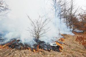 disastro antincendio foto