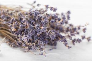 fiori di lavanda con olio essenziale. concetto di spa e benessere. foto