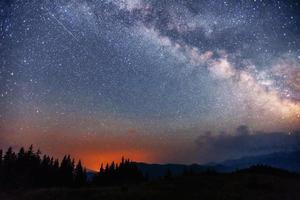 cielo stellato tra gli alberi foto