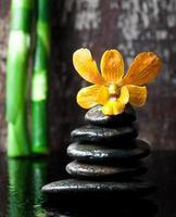 concetto di spa pietre zen e orchidea foto