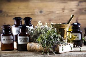 mortaio e erbe medicinali naturali assortiti