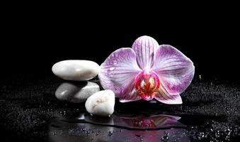 fiore di orchidea con pietre zen foto