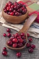 mirtilli rossi in un cucchiaio foto