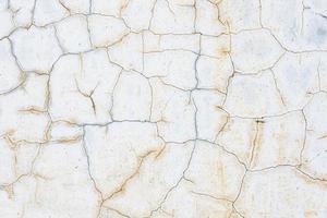 terra screpolata foto