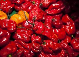primo piano dei peperoncini rossi rossi in drogheria foto