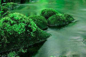 acqua e pietra foto