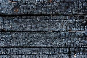 legno carbonizzato foto