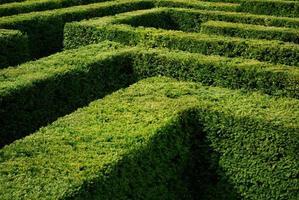 vicino candido di misterioso labirinto in una giornata calda foto