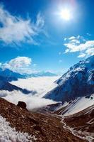 montagne innevate foto