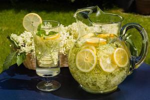 bevanda ai fiori di sambuco foto