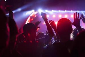 folla al concerto foto