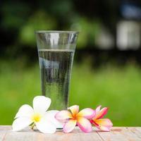 fiori di frangipane e bere acqua foto