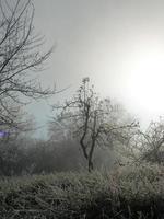 hiver foto