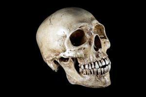 testa di scheletro isolata foto
